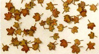 Maple leaves (c. 60pcs.) - Autumn
