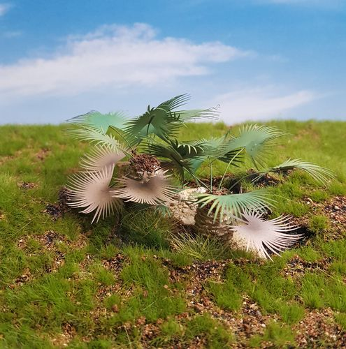 Ground Palm Set – Jungle, Pacific, Desert, Mediterranean