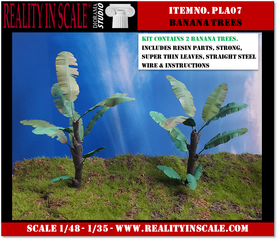 PLA07_Banana_Trees
